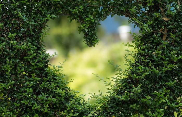 Voyance amour gratuite en ligne avec réponse immédiate